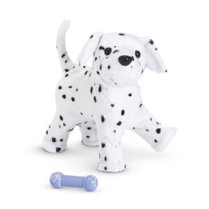 DalmatianPuppy2014