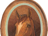 Penny (horse)