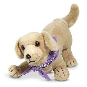 Sandydog