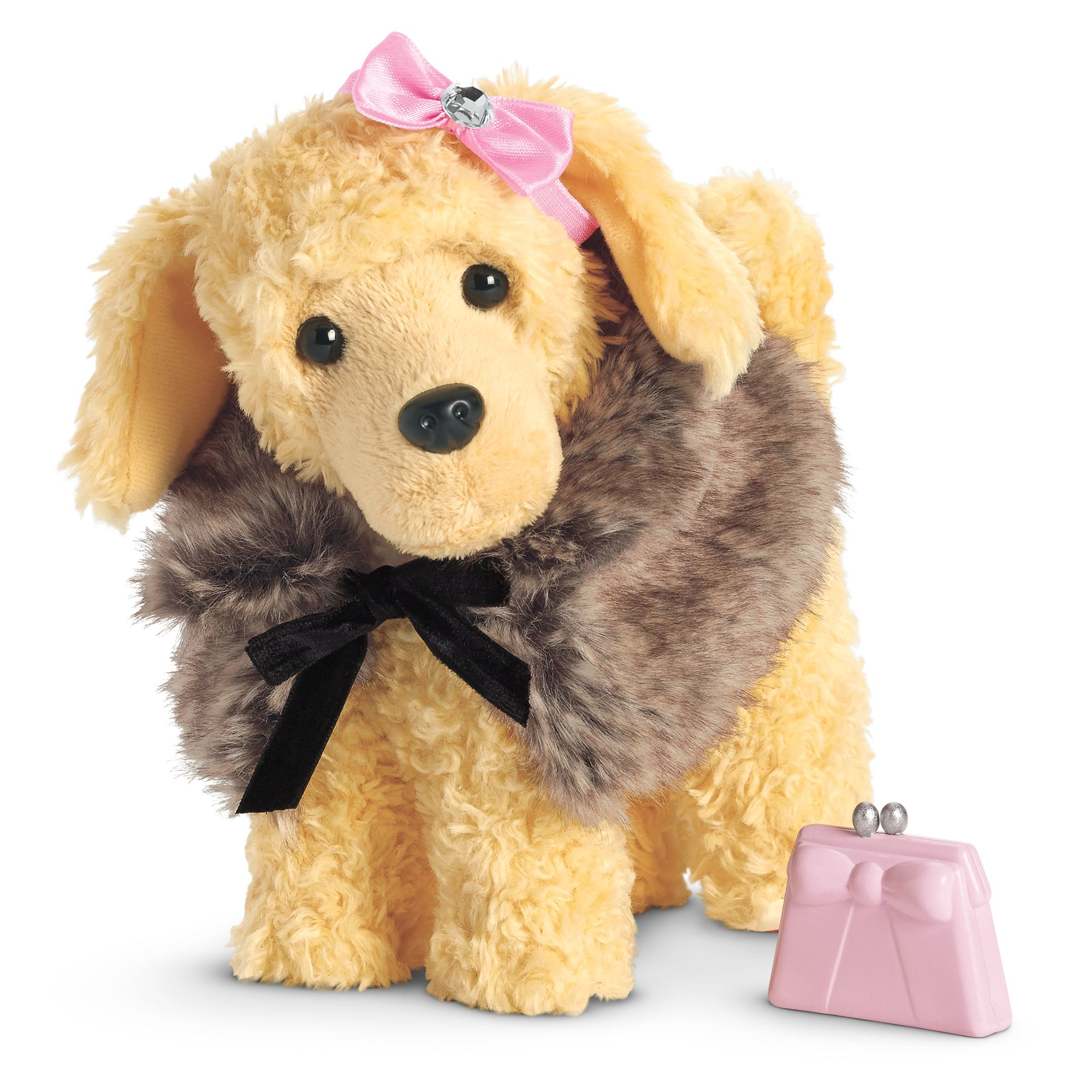 The Fancy Pet Outfit On Apricot Poodle Puppy
