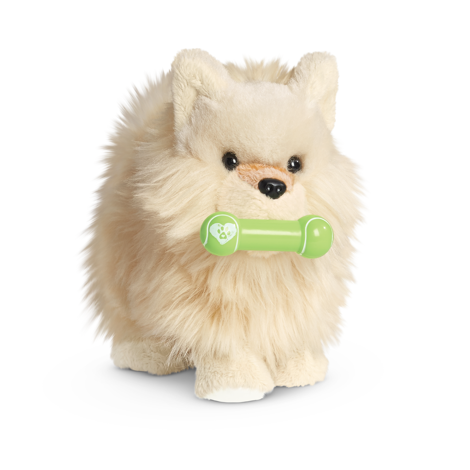 Pomeranian Puppy American Girl Wiki Fandom Powered By Wikia