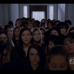 The New Coven