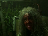 Mama Polk