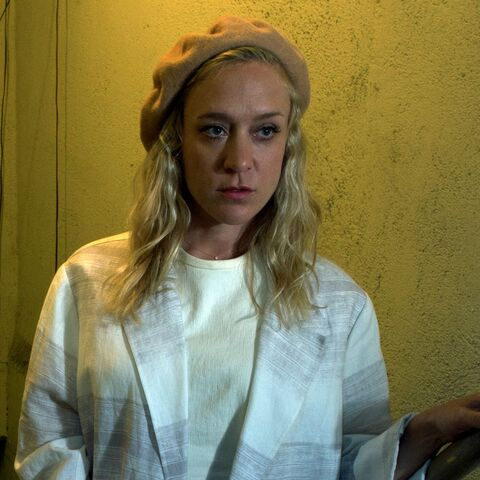 Chloë Sevigny in the role of <a href=