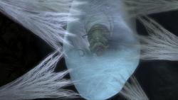 Caterpillar in his cocoon
