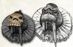 Walrus concept art
