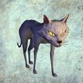 Cat render