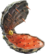 Tundraful icon