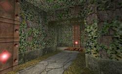 Mystifying Madness - Hallway
