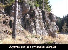 Amerus