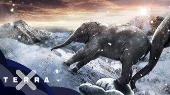 Wie kamen Hannibals Elefanten über die Alpen? Antike
