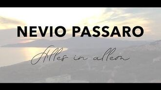 Nevio Passaro - Alles in allem (Official Music Video)