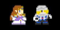 Traje de Zelda - Super Mario Maker