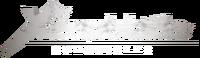 Logo de Xenoblade Chronicles