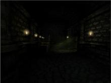 Cellar Archives2