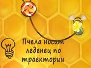 Веревка с пчелой