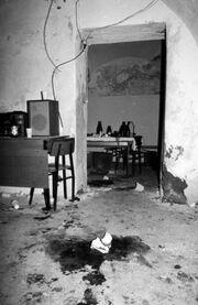 Vinko Palic crime scene