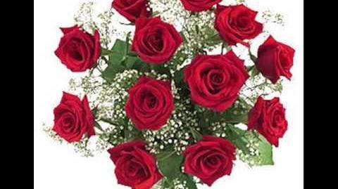 Lorenzo Antonio - Doce rosas