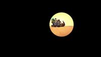 The Ballad of Hopediah Plantar (313)