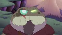 Toadcatcher (241)