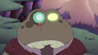 Toadcatcher (242)