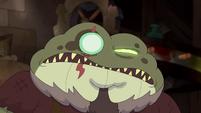 Toadcatcher (65)
