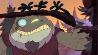 Toadcatcher (214)