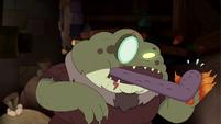 Toadcatcher (80)