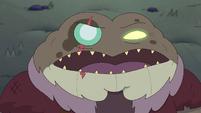 Toadcatcher (234)