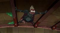 Toadcatcher (158)