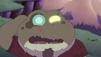 Toadcatcher (244)