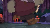 Toadcatcher (222)
