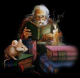 Moreusico reading