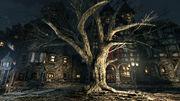 Tree of the Gods