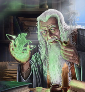 Wizard studying