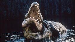Crocodile 1999 01