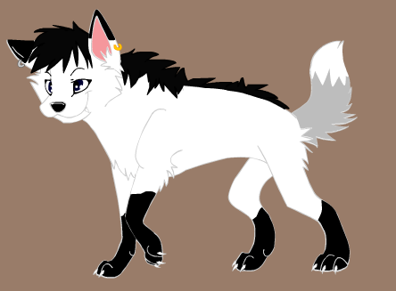 File:Spirit's wolf form.png