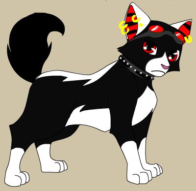 File:Cat Anakin.png