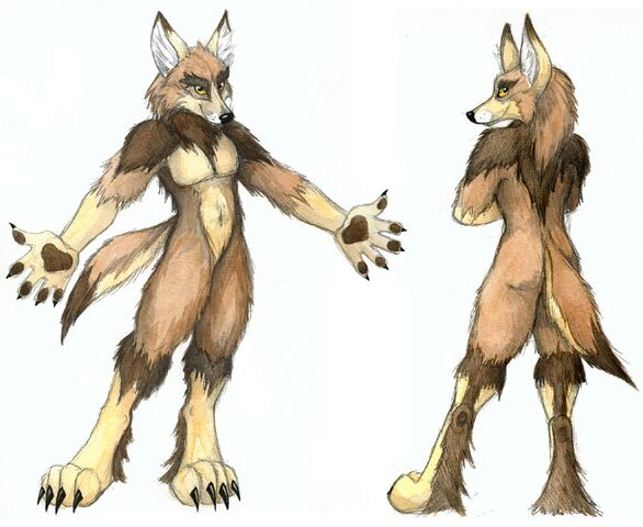 File:Anthro Coyote.jpg
