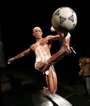 Strip Soccer