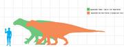 Enchartloguanodon