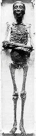 File:The Mummy of King Tut.jpg