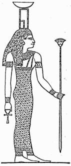 Nephthys MKL1888