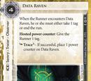 Data Raven