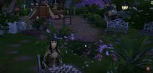 Susie's Last Moments