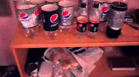 14/NOV/2010 My Pepsi Bottle Collection.