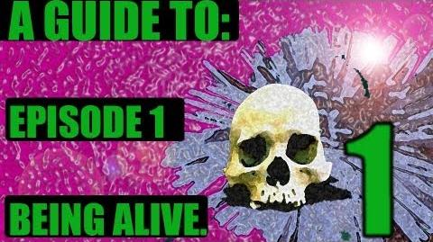 A Guide to Being Alive Part 1