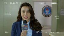 Alyana Reporting