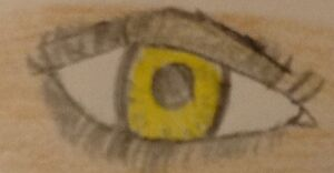 Dark angel eyes