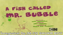 A Fish named Mr. Bubble